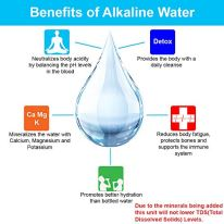 APEX-Quality-Countertop-Drinking-Water-Filter-5-Stage-Mineral-Cartridge-Best-Alkaline-Filtration-System-Recommended-for-Healthier-Safer-Purified-Water-Clear