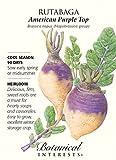 Botanical Interest - Rutabaga American Purple Top