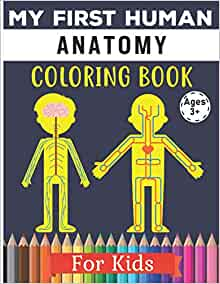 My First Human Anatomy Coloring Book For Kids: Human Body ...