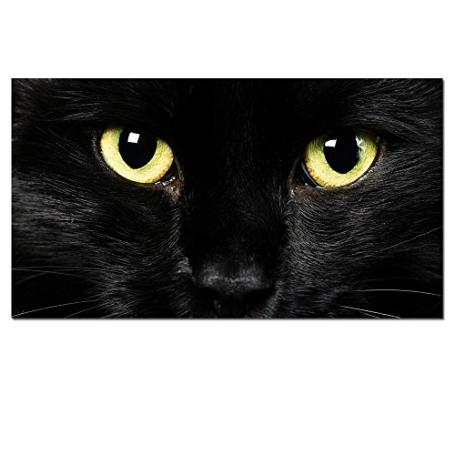 Canvas Wall ArtAbstract Black Cat Prints With FrameAttractive Face Picture