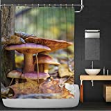 MOOCOM Family of Mushrooms 100% Polyester, Waterproof Shower Curtain,172746 for bothroom,59 in x 71 in
