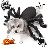 MeetLover Halloween Pet Big Spider Costume Cats Horror Spider Wings Dress Up Funny Party Cat Hoodies Shirts Plush Scary Accessories Dog Cosplay Costumes