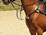 Product review for Windsor Leather 5 Point Breastplate [Black,Full]