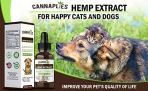 Hemp-Oil-for-Dogs-and-Cats-Cannaplies-Hemp-Oil-Extract-Calming-Anxiety-Relief-for-Cats-and-Dogs-Provides-Natural-Hip-Joint-Supplement-Reduces-Joint-Pain-Inflammation-5000mg-Hemp-Oil