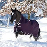 Product review for Rambo Wug Turnout - Light Weight - PurpSilvr,69