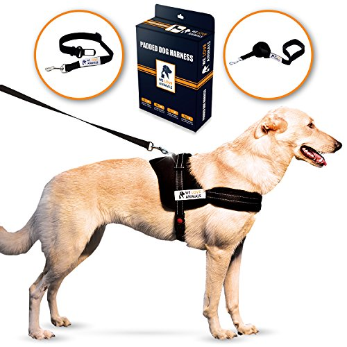 Padded Dog Harness Set: No More Struggling! Easy & Full Control With a Durable No-Pull Harness, Comfortable for Your Pet, Small to X-Large. Reflective & Washable. Includes a Leash and a Car Seat-Belt 1