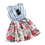 Girls Dress, HeeLinB Princess Dresses Sleeveless Denim Tops Floral Tutu Skirts, 2-3 Years