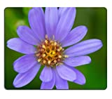 MSD Mousepad Aster Symphyotrichum sp Natural Rubber Material Image 20238968303
