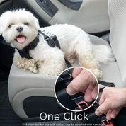 Dog-Seat-Belt-Pet-Dog-Cat-Car-Seatbelt-Safety-2-Pack-Adjustable-Harness-Safety-Belts-Pet-Leash-Heavy-Duty-Nylon-Universal-Fit