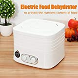 220V 230W 5 trays Electric Food Dehydrators Fruit Vegetable Meat Beef Snack Home Kitchen Appliancesating Dryer