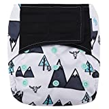 HappyEndings Contoured'Day or Night' All in One AIO Hook and Loop Cloth Diaper (+Pocket) (Mountain High)