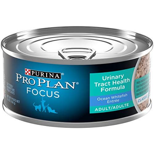 Purina Pro Plan 16897 Urinary Tract Health Pate Wet Cat Food, FOCUS Urinary Tract Health Formula Ocean Whitefish Entree - (24) 5.5 oz. Cans