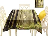WilliamsDecor Dinning Tabletop Decoration Nature,Misty Autumnal Woodland Square Tablecloth W 36' x L 36'