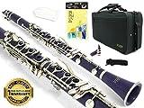 D'Luca 200PR 200 Series ABS 17 Keys Bb Clarinet, Double Barrel, Canvas Case, Cleaning Kit, Purple