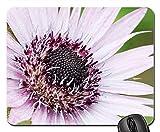Mouse Pad - Purple Thistle Berkheya Purpurea Thorn Flower 1