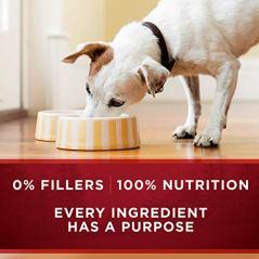 Purina-ONE-SmartBlend-True-Instinct-Adult-Canned-Wet-Dog-Food