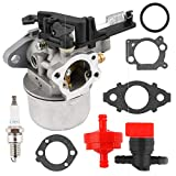 Carburetor Fuel Filter Gasket Kit Spark Plug for Briggs & Stratton 796608 111000 11P000 121000 12Q000 Engines 2700Psi 3000Psi Troy-Bilt Pressure Washer 7.75Hp 8.75Hp 594287 799248 Lawn Mover Parts