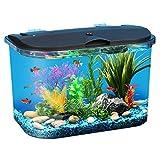 Koller Products Panaview 5 gallon Aquarium Kit with LED Lighting & Power Filter - AP15005FFP
