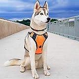 Big Dog Harness No Pull Adjustable Pet Reflective Oxford Soft Vest for Large Dogs Easy Control Harness (XL, Orange)