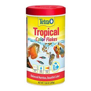 TetraColor Tropical Flakes with Natural Color Enhancer 5
