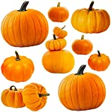 Jumbo Pumpkin Cutouts for Classroom Decoration Fall Celebrations Halloween Party Supply 6 Designs 9 Pcs