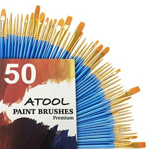 Atool 50 Paint Brushes