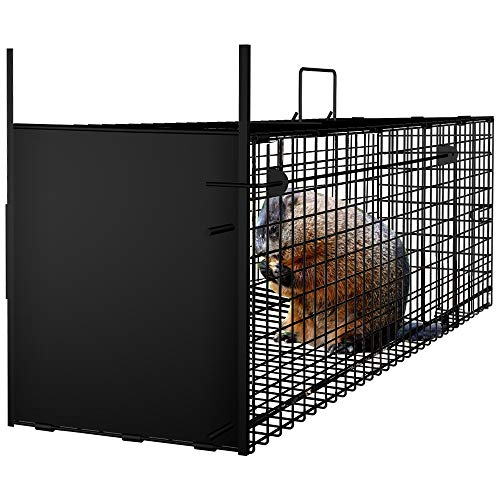 AMAGABELI GARDEN & HOME Humane Live Animal Trap 31'X10.5'X11.5' Catch Release Cage for Nuisance Rodents Control Mole Gopher Opossum Skunk Groundhog Squirrel Spay Feral Stray Cats Rescue Wild Rabbits