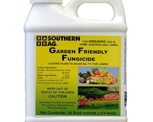 Top 10 Best Fungicides For Plants Top Reviews No Place Called Home