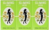 (3 PACKS)50 Bags Slimming German Herb Sliming Tea Lose Weight Burn Diet Slim Fit Fast Detox by SLIMING HERB