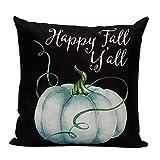 Aremazing White Linen Home Office Decorative Pillowcase Throw Pillow Cushion Cover 18 x 18 Inches Halloween Pumpkin & Cat (Pumpkin/Black)