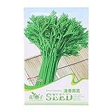 Richi 1Bag Seeds Healthy Green Vegetable Seeds Easy Grow Your Favourite (chrysanthemum coronarium)