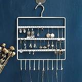 Lemonadeus Jewelry Hooks Storage Hanging Organizer,Earring Holder Necklace Jewelry Display Stand (Space Saver) Hanging Jewelry, Rings, Necklaces, Bracelets (10 hooks/64hooks) (White(72holes10hooks))