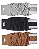 Pet Parents Premium Washable Dog Belly Band (3pack) of Male Dog Diapers, Color Natural, Size: Small Dog Wraps