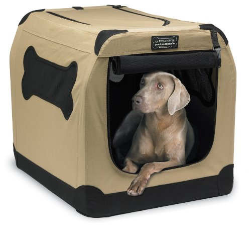 Indoor Outdoor Dog House