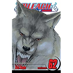 Bleach, Volume 62