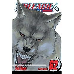 Bleach, Volume 62