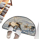 Welcome Door mat Winter Reindeers Natural Environment Tromso Northern Norway Caribou Antler Wildlife Machine wash/Non-Slip W31 xL20 Brown Ivory Blue