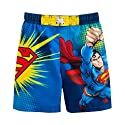 DC Comics Superman Swim Trunks Bathing Suit Swim Shorts Toddler 2T