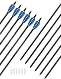 PANDARUS 30' Pure Carbon Hunting Arrows Archery with Removable for Compound & Recuve Bow Target (Pack of 12)