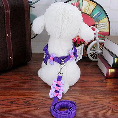 Stock Show Pet Adjustable Nylon Strap Collar with Leash Set with Cute Polka Dots in Bowtie Design Great for Walking Hiking and Training for Small Dog Cat Puppy Kitten Small Animals 1