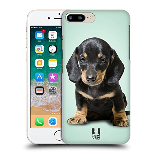 Head Case Designs Sitting Dachshund Puppy Popular Dog Breeds Hard Back Case for Apple iPhone 7 Plus / 8 Plus