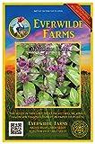 Everwilde Farms - 2000 Cinnamon Basil Herb Seeds - Gold Vault Jumbo Seed Packet