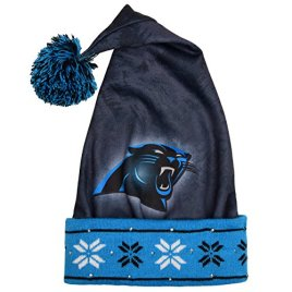 NFL Carolina Panthers Light Up Printed Santa Hat, One Size, Blue