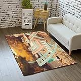 iBathRugs Door Mat Indoor Area Rugs Living Room Carpets Home Decor Rug Bedroom Floor Mats,Chairs Autumn