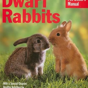 Dwarf Rabbits (Complete Pet Owner's Manual) 9