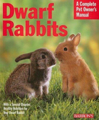 Dwarf-Rabbits-Complete-Pet-Owners-Manual-Paperback--May-1-2008