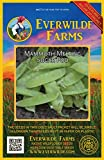 Everwilde Farms - 150 Mammoth Melting Sugar Pea Seeds - Gold Vault Jumbo Seed Packet