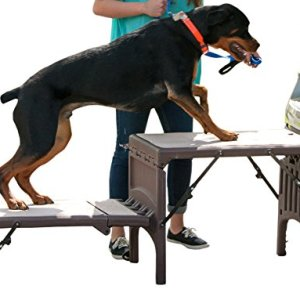 Pet Gear Free Standing Ramp for Cats and Dogs. Great for SUV's or use Next to Your Bed. 4 Models to Choose from, Supports 200-300 lbs, Lightweight Easy-Fold Design 4