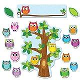 Carson Dellosa Colorful Owls Behavior Bulletin Board Set (110226)