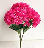 2 Bunches Bougainvillea Glabra Artificial Display Flower 5 Heads/ Bunch Big Size Fake Bougainvillea Flower for Wedding Centerpieces Decorative Flowers (hot pink)